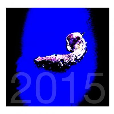 ( digigraphie 2015 )